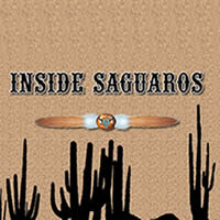 Inside Saguaros by Smoke and Mirrors